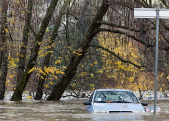 3 Tips for Navigating the Pre-Owned Market in the Wake of Hurricane Season